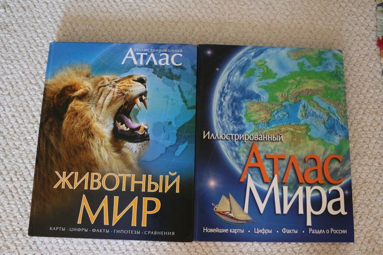 Наша география и мир животных