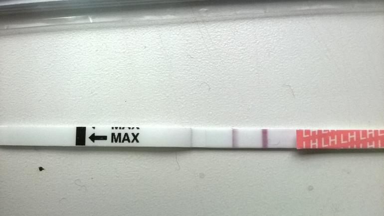 Тест на беременность фото в домашних условиях