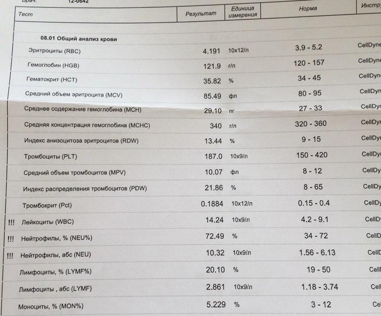 О чем говорят повышенные лейкоциты у беременной 17