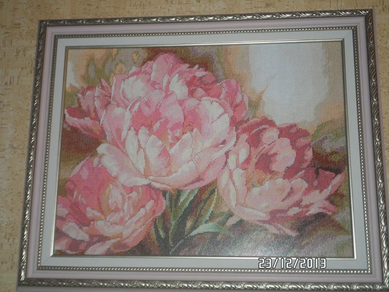 Трио тюльпанов