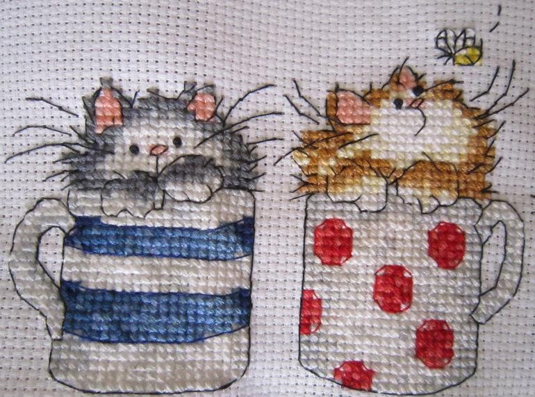 Вышивка коты в кружке 16