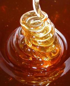 Алтайский мёд Дягильный (ведерко 1,5 кг)