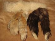 Хвосты: чернобурка, лиса, песец
