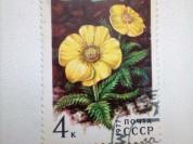 Марка 4к 1977 год СССР Новосиверсия Ледниковая
