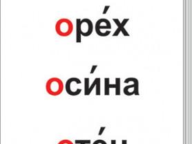 """Таблицы """"Словарные слова"""" (64 шт, формат А3) ламин"""