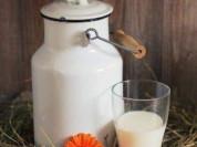 Молоко козье с доставкой
