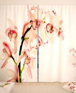 Фотошторы Очаровательная орхидея на белой глади Габардин