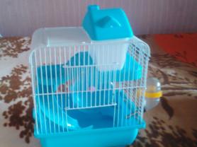 Клетка для мелких грызунов с наполнением