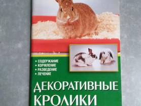 Декоративные кролики. Содержание. Разведение