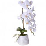 15044-NT Дек/цветы Белая орхидея в кер/вазе(х6)