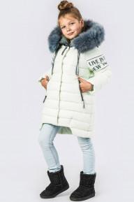 Детская зимняя куртка DT-8261-12