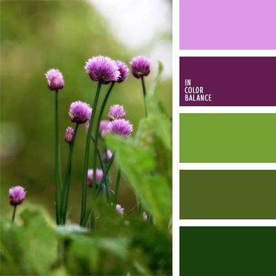 Сочетание болотного цвета с другими цветами