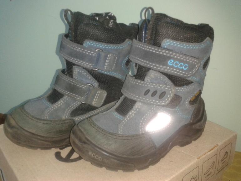 29564e18 Продам зимние ботинки ECCO 24 размер - запись пользователя Ольга ...