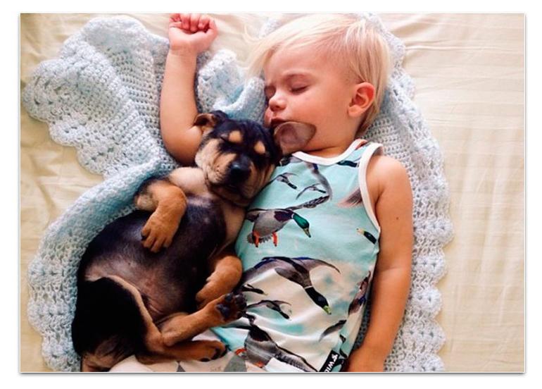 Принуждение спящих мамаш 26 фотография