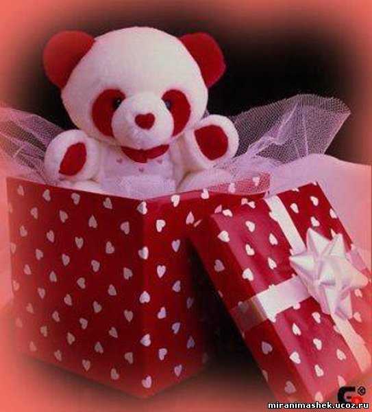 Подарки для самой любимой девушки