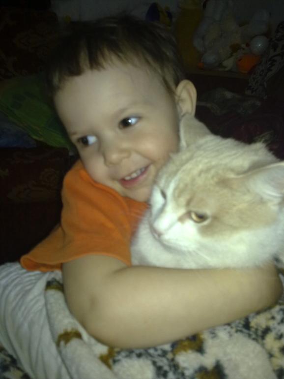 ТН  Домашние животные Кошка