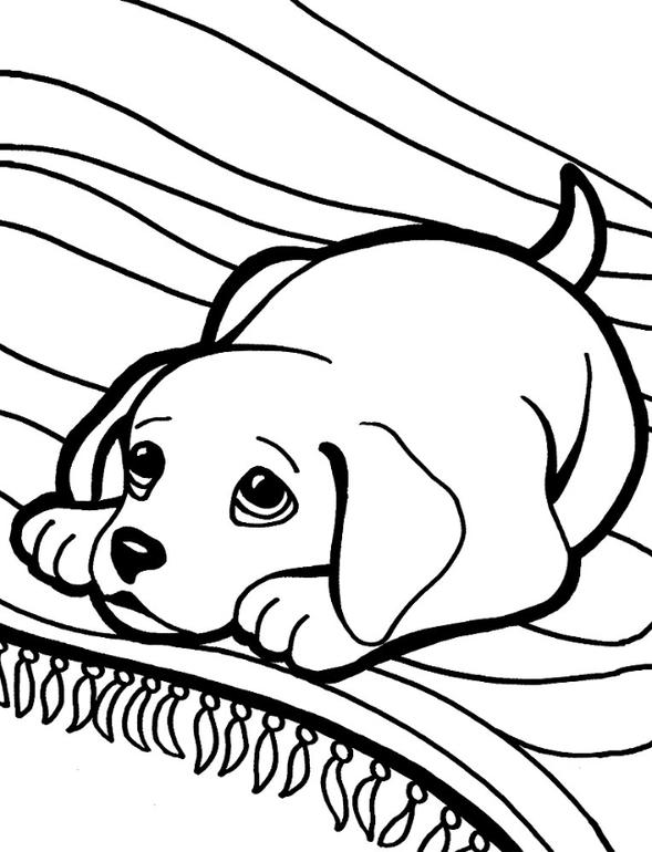 Раскраски про щенят распечатать