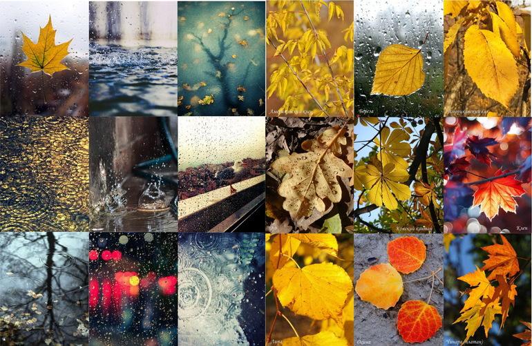 Картинки природы на лист а4