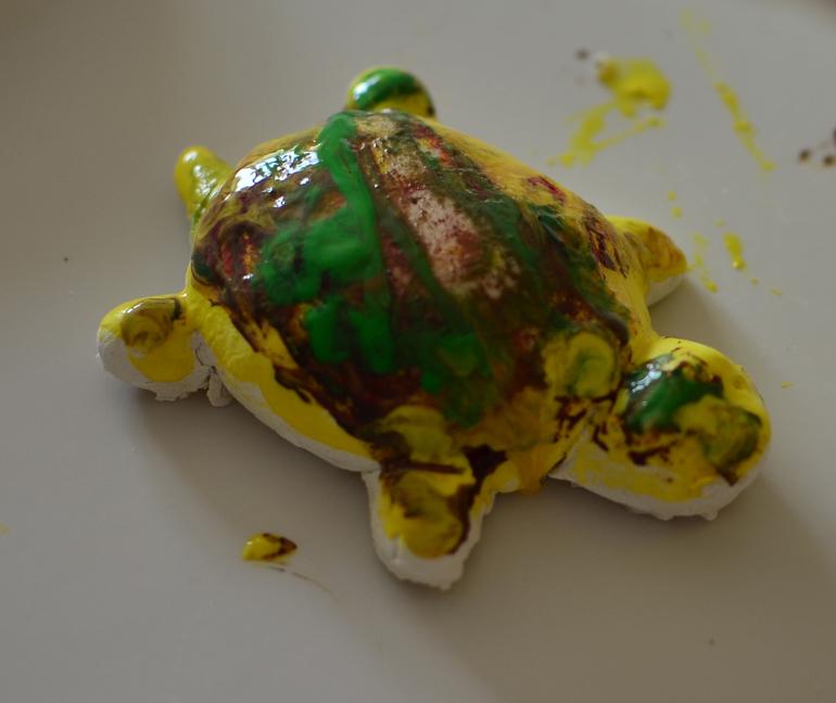 Как мы красили черепаху