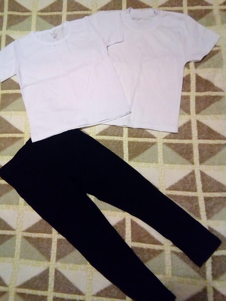 Комплект для физкультуры ( футболки + лосины)
