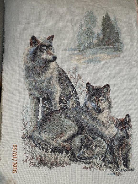 Схема волки из риолиса
