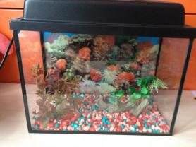 продам аквариум 20 литров с крышкой