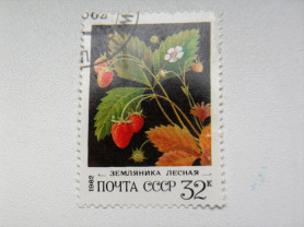 Марка 32к 1982 год СССР Земляника лесная