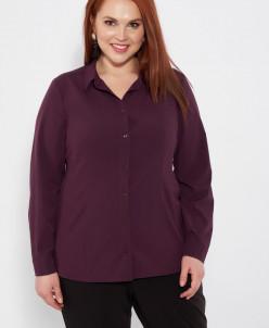 Блуза 0069-2