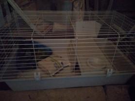 Клетка для кролика+ полный комплект