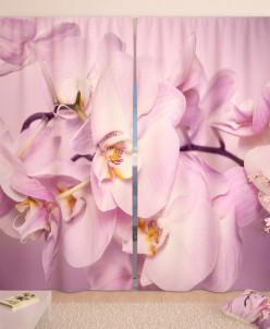 Фотошторы Божественная орхидея Габардин