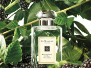 Jo Malone Blackberry & Bay Cologne 100 ml