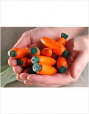 Счетный материал 12 морковок в льняном мешочке