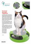 Когтеточка для кошек «МЫШЕЛОВ» (Feline Frenzy Cat Toy)