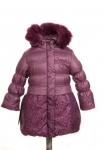 10-0046 Куртка зимняя Плащевка Дикая слива