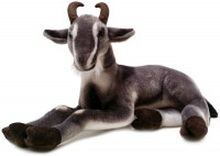 Patrick the Pygmy Goat  19 Inch