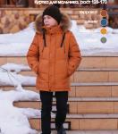 Детская куртка А*З19*14*304 синтепух