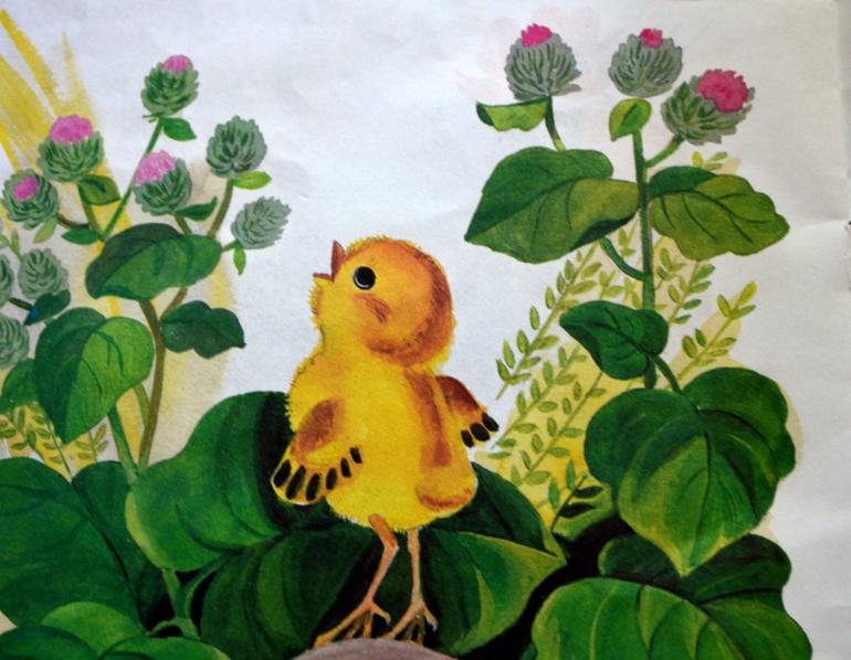 сказки о цыплятах картинки привлекают клиента хорошей