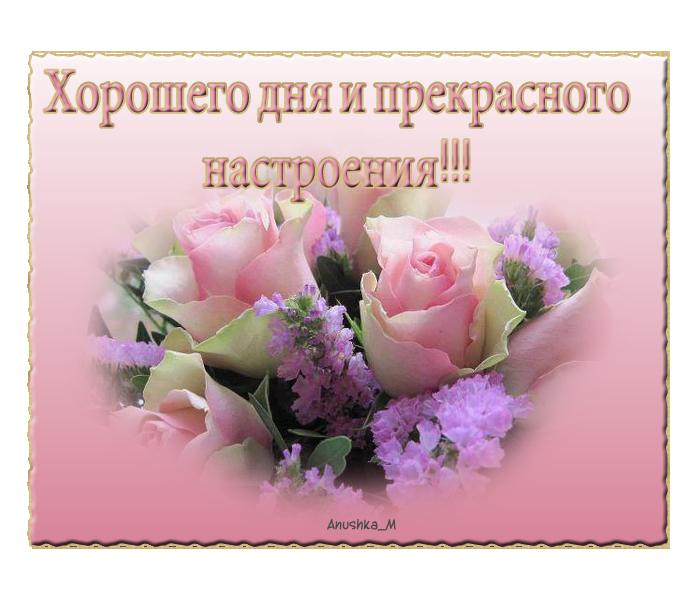 https://cdn3.imgbb.ru/user/229/2299445/201607/b69e5c667ec35842d996953462615ccf.png