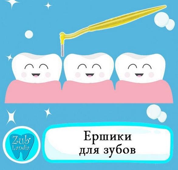 Нужные книжки. Чистим зубки каждый день купить с доставкой по ... | 560x586